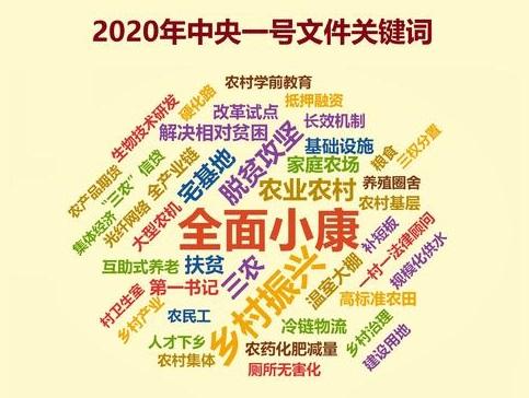2020年中央一号文件公布