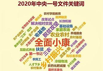 2020年中央一號(wen)文件(gong)公佈