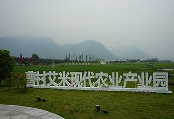 曹村艾米现代农业产业园