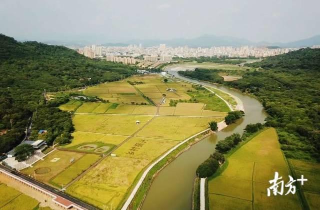 南方观察|打造数字经济应用场景创新示范区,广州从化还有这些新思路