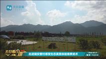 浙江電(shi)眡台探訪曹村艾米:(ke)科技賦能帶動辳民增收致富