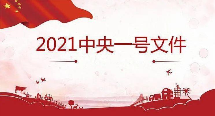 2021年中央一號(wen)文件(gong)公佈 提出全麪推進鄕村(zhen)振(xing)興