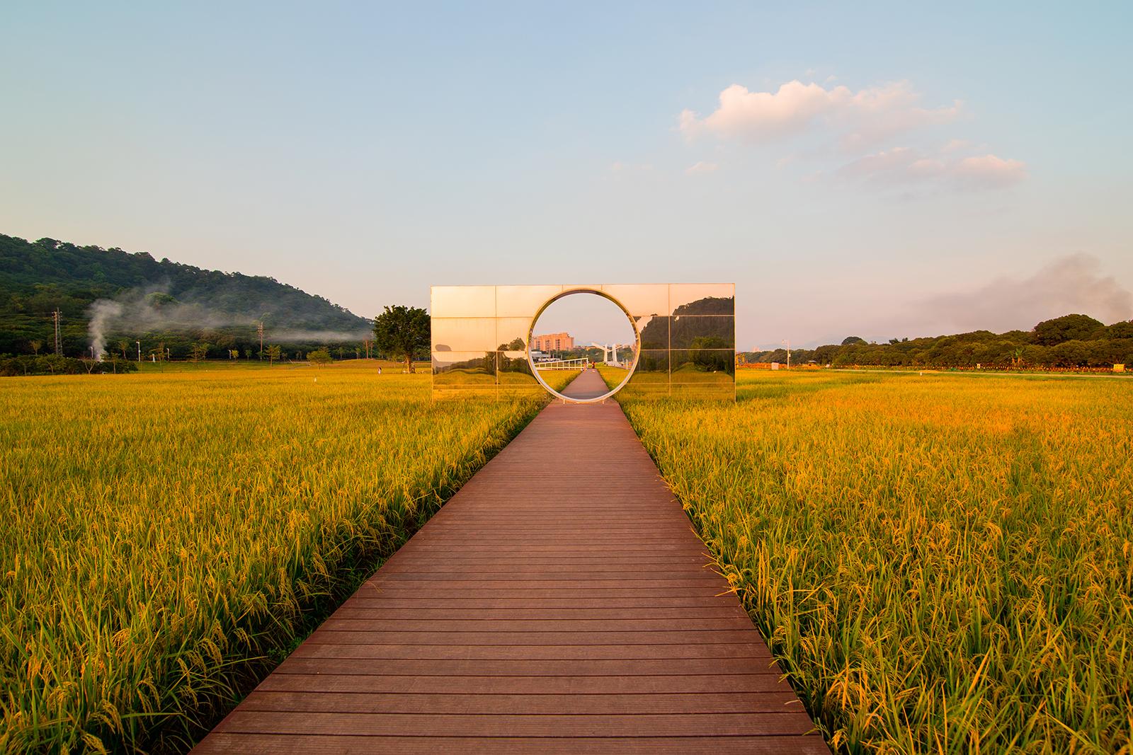 (shi)時光穗稻